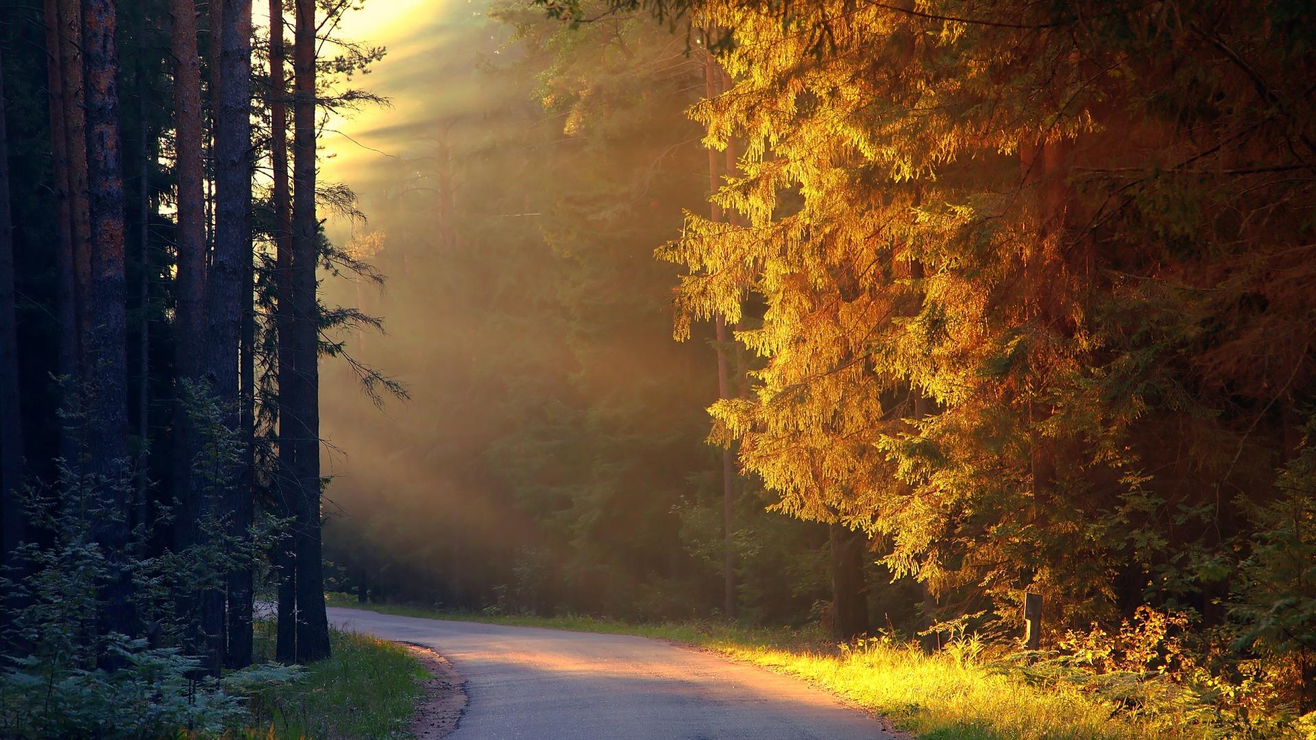 Ο δρόμος για την Επιτυχία: 4 πράγματα που πρέπει να ξέρεις